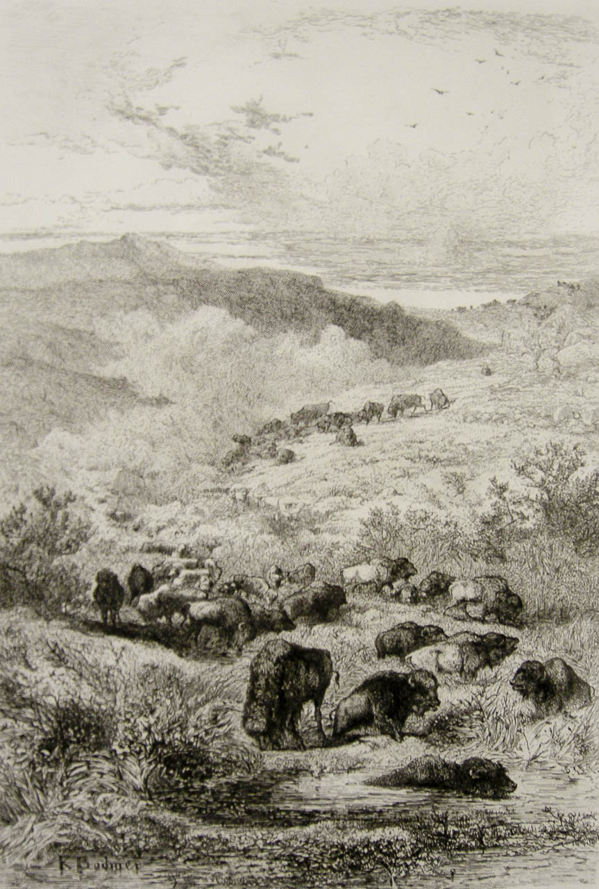 Troupeau de bisons par Karl Bodmer